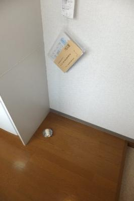 ☆洗濯機置き場※同物件別部屋の参考写真