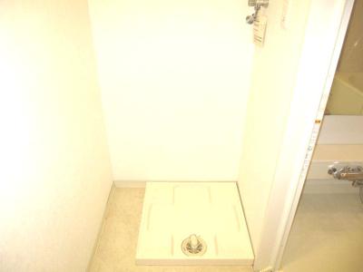 洗濯機置き場の脇に小スペース有。隙間収納などいかがでしょう。