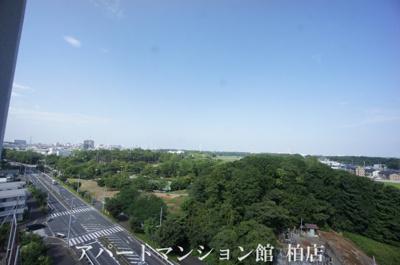 【展望】セントラルパークウッズ