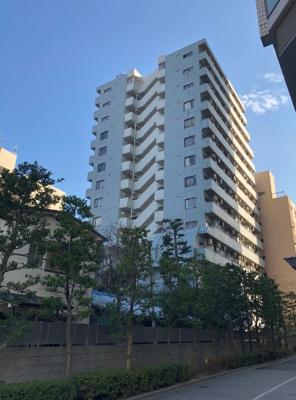 鉄骨鉄筋コンクリート造の地上14階建マンション。