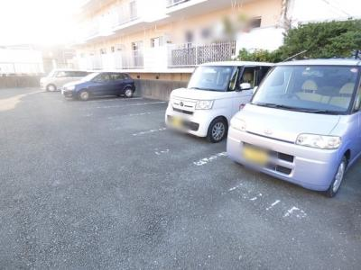 【駐車場】丸上ハイツA・B