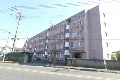 【外観】藤代ハイツ