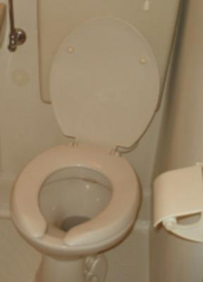 専用トイレ★