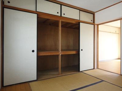 【収納】セントポーリア蜆塚