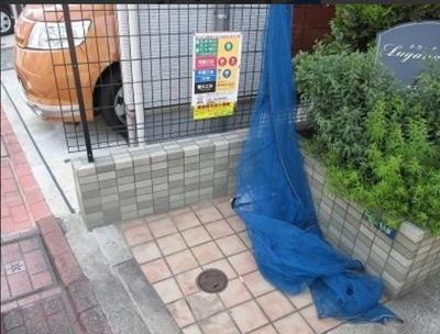 【周辺】Lugana新蒲田