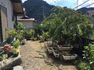 【庭】京都市山科区四ノ宮小金塚