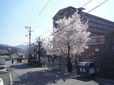 【外観】八木パークハウス桜通り