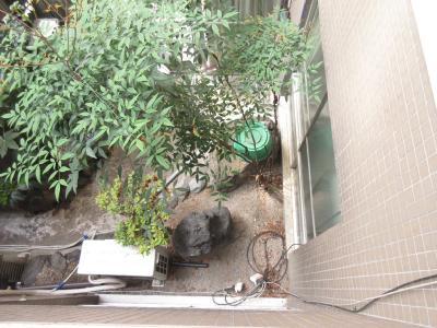 下を見た風景  所在階は4階ですが、3階の屋上が中庭になっていて高さを感じません