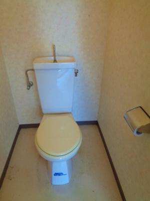 【トイレ】ドムール明星
