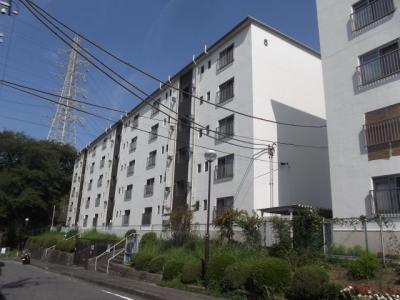 【外観】杉田大谷団地5号棟