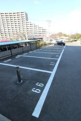 【駐車場】グリーンコーポジェームス山弐号館