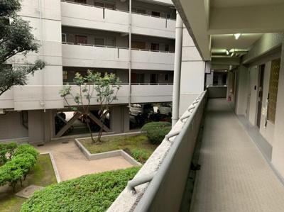 共用部分の廊下です。