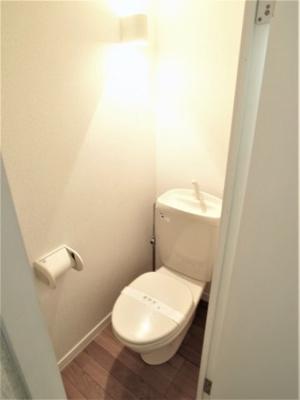 【トイレ】コニファ―