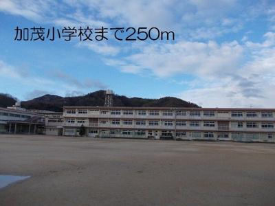加茂小学校まで250m