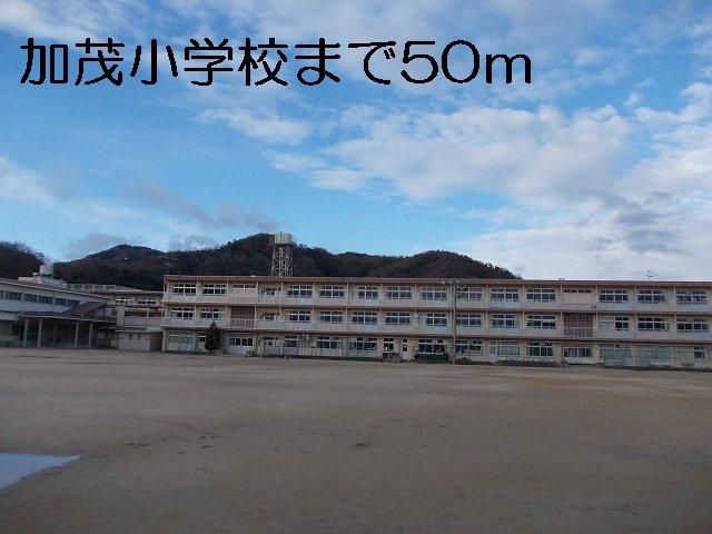 加茂小学校まで50m