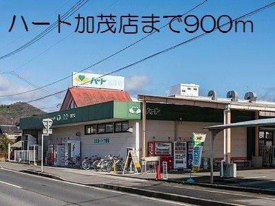 ハート加茂店まで900m