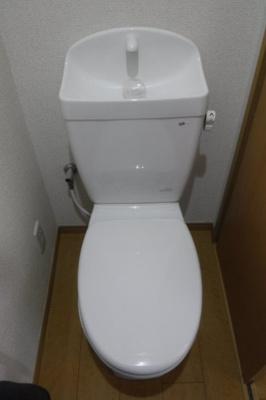 【トイレ】第8テーオーハイツ