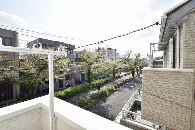 バルコニーからは春になると桜を眺めることが出来ます!