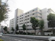 パシフィック江古田マンションの画像