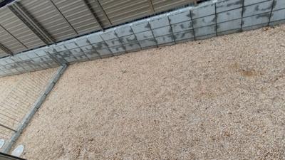 【庭】東区大幸 2号棟<仲介手数料無料>矢田小学校・矢田中学校 新築一戸建て