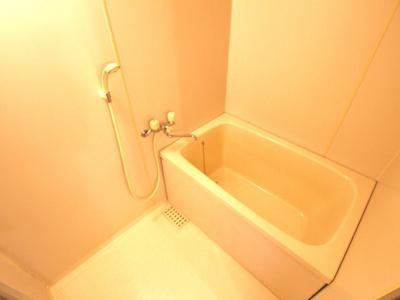 【浴室】カピラ城が山
