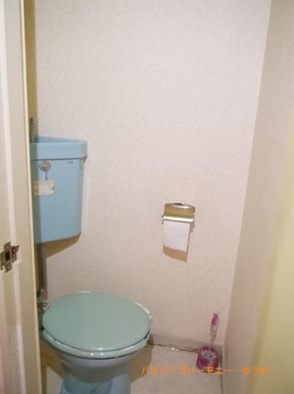 【トイレ】キャニオンマンションあずさわ