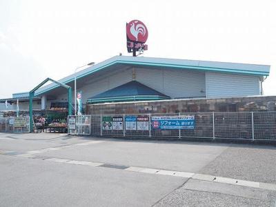 コメリ大沢野店まで1100m