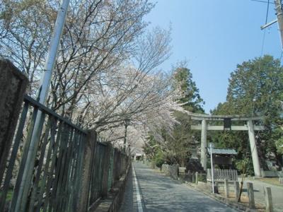 三井寺近隣