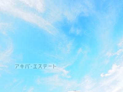 【展望】ハーモニーテラス柴又Ⅳ