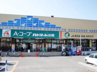 Aコープハトマート山越店 449m
