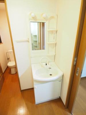 スペースのある洗面所