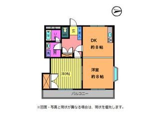 DKと洋室の間の扉は可動式ドアになってますので外せば1LDK風にできちゃいます!