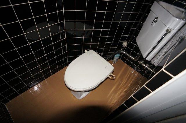 【トイレ】コーポラス辰巳