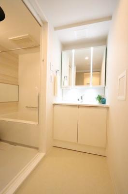 独立洗面台、小物を置くことができて便利です 三郷新築ナビで検索