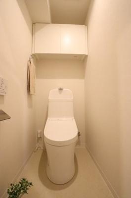 落ち着いたトイレです 三郷新築ナビで検索