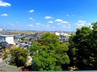 バルコニーからの眺望。仙波河岸史跡公園の緑で癒されます。