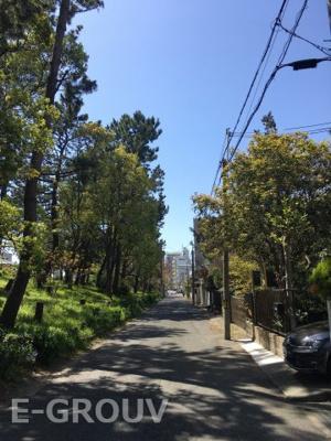 南側は松並木が建ち並ぶ閑静な住宅街です