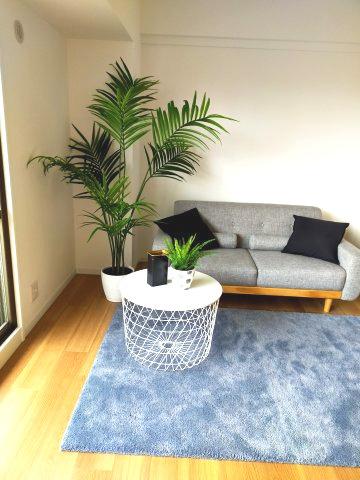 くつろぎのソファとテーブルです。観葉植物でお部屋がぐっと明るく見えますね。