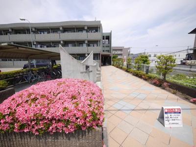 【エントランス】ベルコリーナ東戸塚