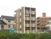 ViViハウス(L)の画像