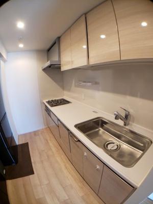 広い天板のシステムキッチン 食器洗浄乾燥機付き ガスコンロ