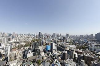 東京タワーを望む眺望