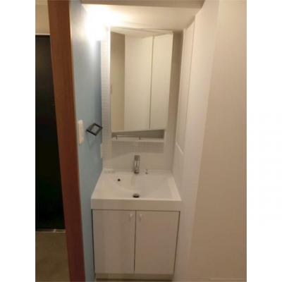 【独立洗面台】ズームトゴシギンザ