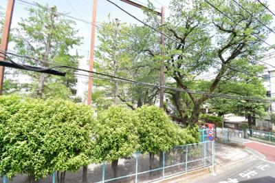 溢れる緑がマイナスイオンを届けてくれそう。駅近ながら自然豊かな環境は嬉しいですね。