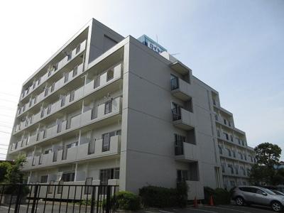【外観】ロイヤル太平洋