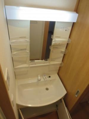 便利なシャワー水栓付独立洗面台