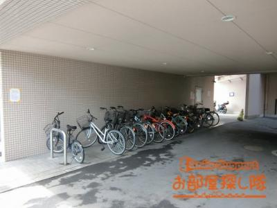 駐輪場です 綺麗に並んでいました