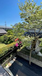 みつわ台 中古一戸建て みつわ台駅 物件からの眺望が良く、庭木を楽しめます!
