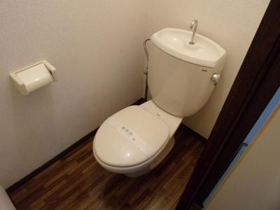 【トイレ】ラグリュー3