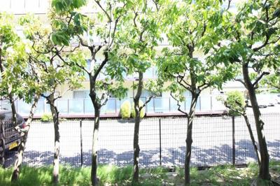 竹之西コーポラス